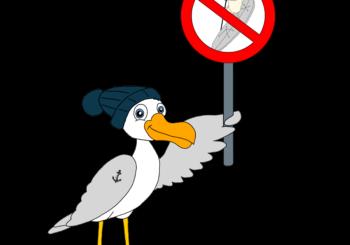 Safe on SUP: Neue Initiative zu Sicherheit und richtigem Verhalten beim Stand Up Paddling